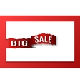 inscription big sale vector image
