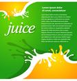 juice fruit drops liquid orange green brochure vector image vector image