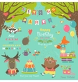 Birthday party elements with cute animals vector image
