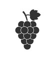 grape fruit with leaf icon on white background vector image