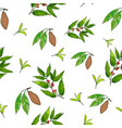 seamless pattern with coffee cacao and tea vector image