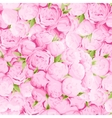 Bright peonies background vector image