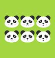 emotional panda faces vector image