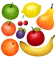 Watercolor Ripe Fruit Set vector image