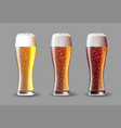 beer on glass realistic beer set on vector image