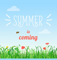 poster of summer is coming vector image