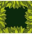 leaves frame vector image