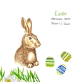 Easter background with rabbit vector image