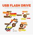 diagram elements set of usb flash drive vector image