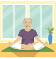 senior man doing yoga exercises in lotus position vector image