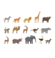 Animals Set colored icons and symbols vector image