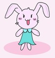 Cute little bunny vector image