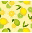 Seamless pattern with lime and lemon vector image