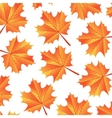 background autumn maple leaves vector image