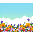 flowers garden for you design vector image vector image