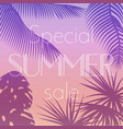 poster of special summer sale vector image vector image
