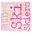 Kopaonik in Serbia text background wordcloud vector image