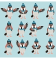 Sparrow with hats flat set vector image