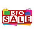 big sale banner or label vector image