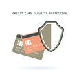 credit cards protection vector image