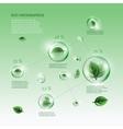 bio infographics vector image