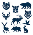 icons of wild animals and birds for hunting vector image vector image
