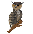 Horned Owl on a Branch vector image