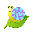 A view of snail vector image