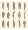 set of feather vector image vector image