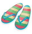 A pair of a colorful slippers vector image