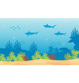 silhouette of shark background on underwater vector image