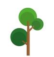 single tree with round foliage icon vector image