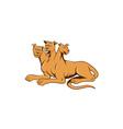 Cerberus Multi-headed Dog Hellhound Sitting vector image