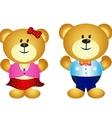 Cute Couple Bear vector image