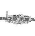 Best beaches in florida text word cloud concept vector image