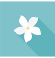 jasmine flower icon with long shadow vector image