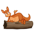 Cartoon Kangaroo vector image