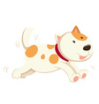 Cute dog running alone vector image