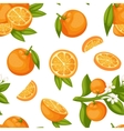 Orange fruit seamless pattern vector image