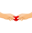 hands with love concept vector image vector image