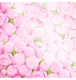 Bright peonies background vector image vector image