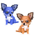 lovely foxes of different colors blue and brown vector image