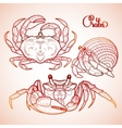 Graphic crab collection vector image