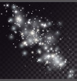 white shiny particles and stars trace vector image