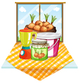 Onions near the window vector image vector image
