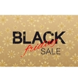 Black Friday Sale background Promotional banner vector image