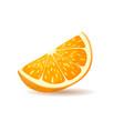 orange slice with peel vector image