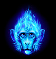 Monkey head in fire vector image vector image