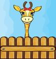 Giraffe card template vector image