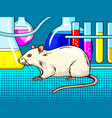 laboratory mouse pop art style vector image